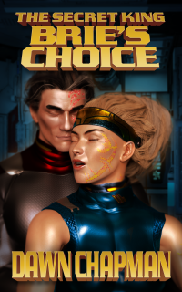 Bries Choice by Dawn Chapman The Secret King